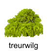 treurwilg